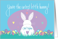 First Easter for Great Nephew, Hippity Hoppity Bunny with Eggs card