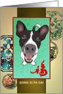 Chinese new year of the dog, cute dog and luck card
