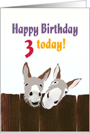 3rd birthday, Donkeys looking over wooden fence card