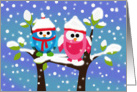 Christmas Card - Two Cute Owls card