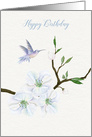 Happy Birthday Hummingbird with Magnolia Flowers card