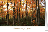 Thanksgiving to Nephew - Autumn Forest card