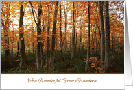 Happy Thanksgiving to Great Grandma - Autumn Forest card