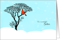 Christmas for Sister - Snow Scene, Red Cardinal in Tree card