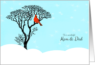 Christmas for Mom and Dad - Snow Scene, Red Cardinal in Tree card