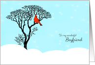 Christmas for Boyfriend - Red Cardinal in Tree card