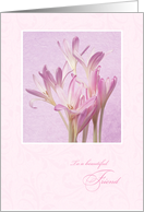 Mother's Day for Friend - Soft Pink Flowers card