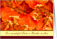 Thanksgiving to Sister & Brother in Law ~ Colors of Fall/Autumn Leaves card