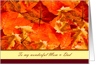 Happy Thanksgiving to Mom and Dad ~ Colors of Fall/Autumn Leaves card