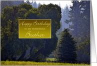 Happy Birthday to Brother ~ Walk in the Park Watercolor card
