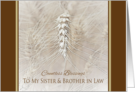 Thanksgiving Wheat To Sister and Brother in Law ~ Countless Blessings card