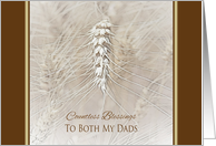 Thanksgiving Wheat To Both My Dads ~ Countless Blessings card