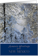 Season's Greetings from New Mexico ~ Snow Covered Trees card