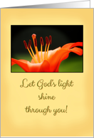 Orange Lily - Baptism Card