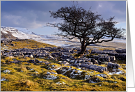 Winter scene, The Yorkshire Dales, limestone country - blank card