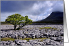 The Yorkshire Dales - Ingleborough from White Scar - Blank card