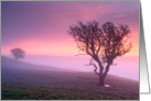 Pink misy sunrise with 2 trees, tranquil - customizable card