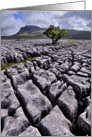Ingleborough from White Scars, Yorkshire Dales - Blank card