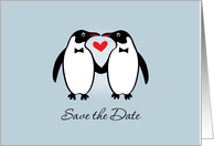 Gay Penguins Save The Date Wedding Announcement card