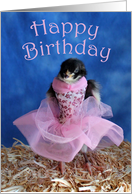 Happy Birthday Ballet Dancer Ballerina Cute Chick card