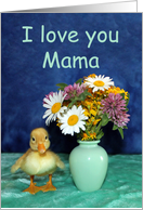 I Love You Mama - Get Well - Yellow Pekin Duckling with Wild Flowers card