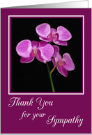 Thank You for your Sympathy with Pink Hand Painted Orchid card