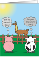 Funny Birthday Animals - Rudy Pig & Moody Cow - Dalai Llama card