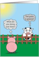 Funny Birthday Animals - Rudy Pig & Moody Cow - Green Grass card