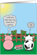 Funny Birthday Animals - Rudy Pig & Moody Cow - Open Hole card