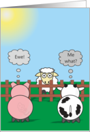 Funny Birthday Animals - Pig Cow & Sheep - Rudy & Moody Ewe - Me What? card