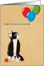 Cat Staring Up At Three Balloons, Happy Birthday card