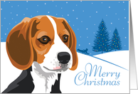 Happy Holidays, From Our Pack to Yours, Beagle, Snowflakes card