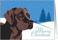 Happy Holidays, From Our Pack to Yours, Chocolate Labrador Retriever card