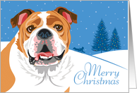 Happy Holidays, From Our Pack to Yours, Bulldog, Snowflakes card