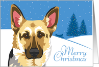 Happy Holidays, From Our Pack to Yours, German Shepherd, Snowflakes card