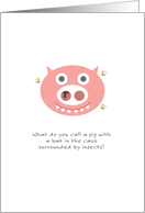 Birthday Humor, Cute Pig with Booger Surrounded by Flies Pun card