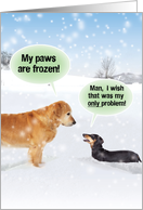 Dogs My Paws Are Frozen Christmas Joke Paper Card