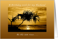 A Birthday Wish for my Husband , As The Sun Rises, Palm Tree card