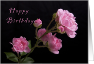 Happy Birthday Pink Roses card