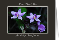 Thank You Mom,Mother for Being There For Me, Wild Purple Orchids card