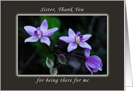 Thank You Sister for Being There For Me, Wild Purple Orchids card