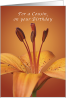 For a Cousin on your Birthday, Orange daylily card