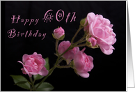 Happy 60th Birthday, Pink roses card