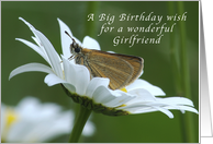 A Big Birthday Wish for a Girlfriend, Butterfly in a White Daisy card