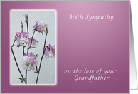 With Sympathy on your Loss of Your Grandfather, Columbine Flower card