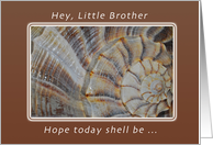A Birthday Wish for a Little Brother, Shell card