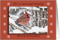 Merry Christmas for a Son and Family, Cardinal in the Snow card
