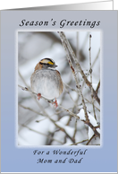 Season's Greetings a Wonderful Mom and Dad, Sparrow card