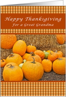 Happy Thanksgiving, For a Great Grandmother, Pumpkins card