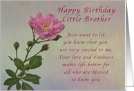 Happy Birthday Little Brother, Simple Pink rose card